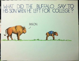 what do the buffalo say to his son when he left for college bison (bye son)