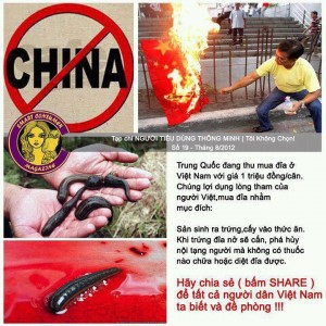 china buy Vietnamese leeches with high price so they can harm the world by implant the leeches eggs into fruits we eat and make all of us sick and died is this true or just someone real jealous or upset with china making up story?