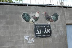 Trang Trai Chang Nuoi Ai - An - Xa Vinh Huu - Go Cong Tay