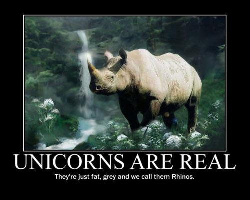 Unicorns horse does exist and still exist today here is the proof unicorns are real they're just fat grey and we call them rhinos