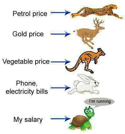 My salary versus my living cost and everything else funny picture
