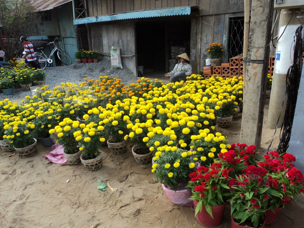 Cu Lao Tan Thoi - Flower Market for TET 2013 in Vietnam Tan Thoi