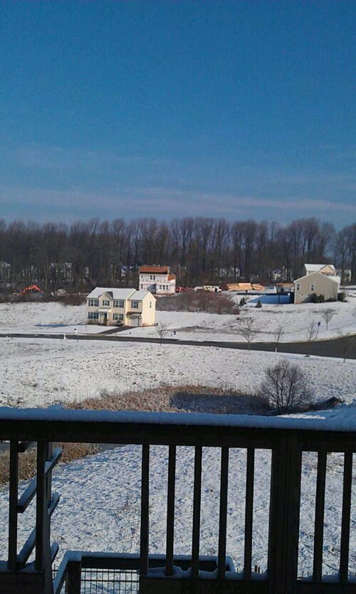 Scenic view from my backyard deck four homes are being built very soon no more nice trees scenic view