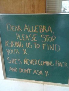 Dear Algebra I need to find my x
