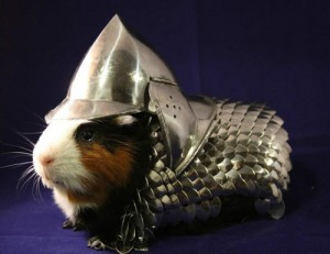 guinea pig ready for battle! LOL armor for sale on ebay
