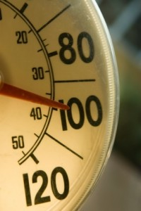 how to survive the heat wave 2013